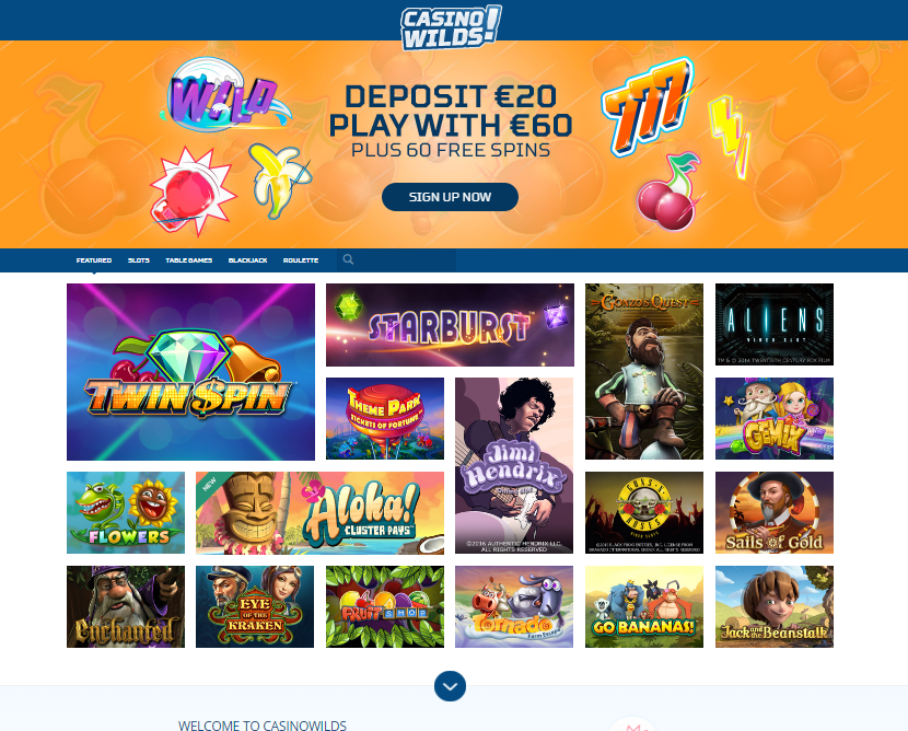 casinowilds sign up page