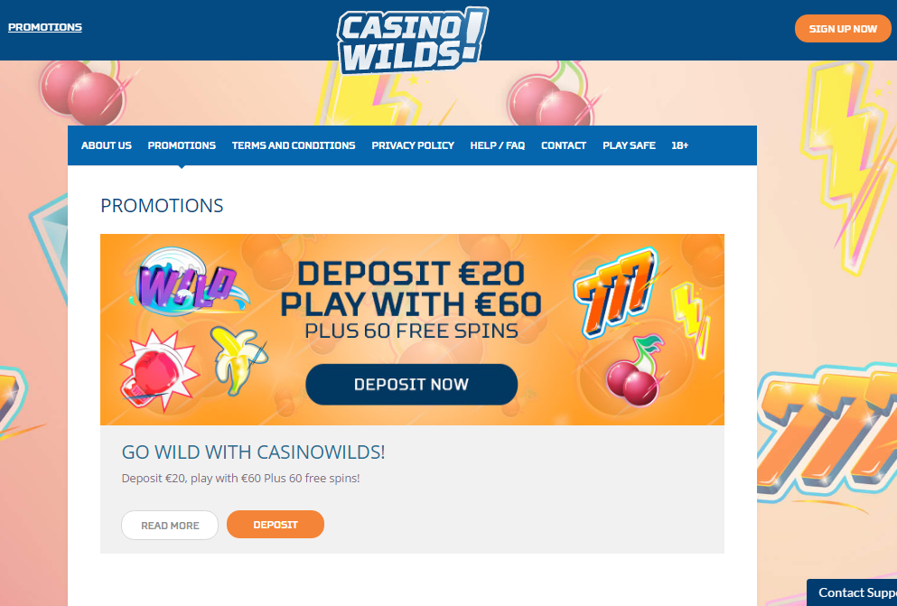 casinowilds welcome offer