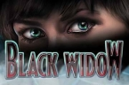 black-widow-slot